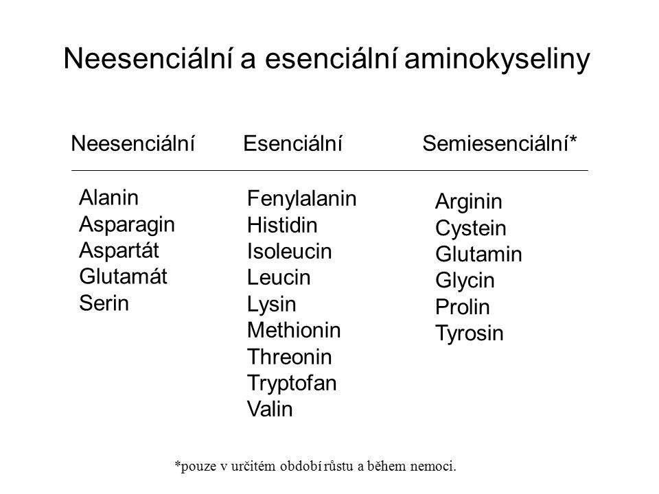 Neesenciální a esenciální aminokyseliny