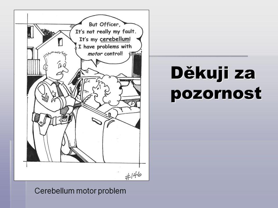 Děkuji za pozornost Cerebellum motor problem