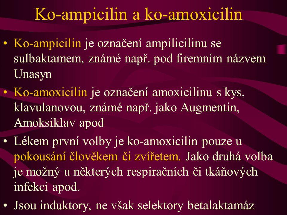 Ko-ampicilin a ko-amoxicilin