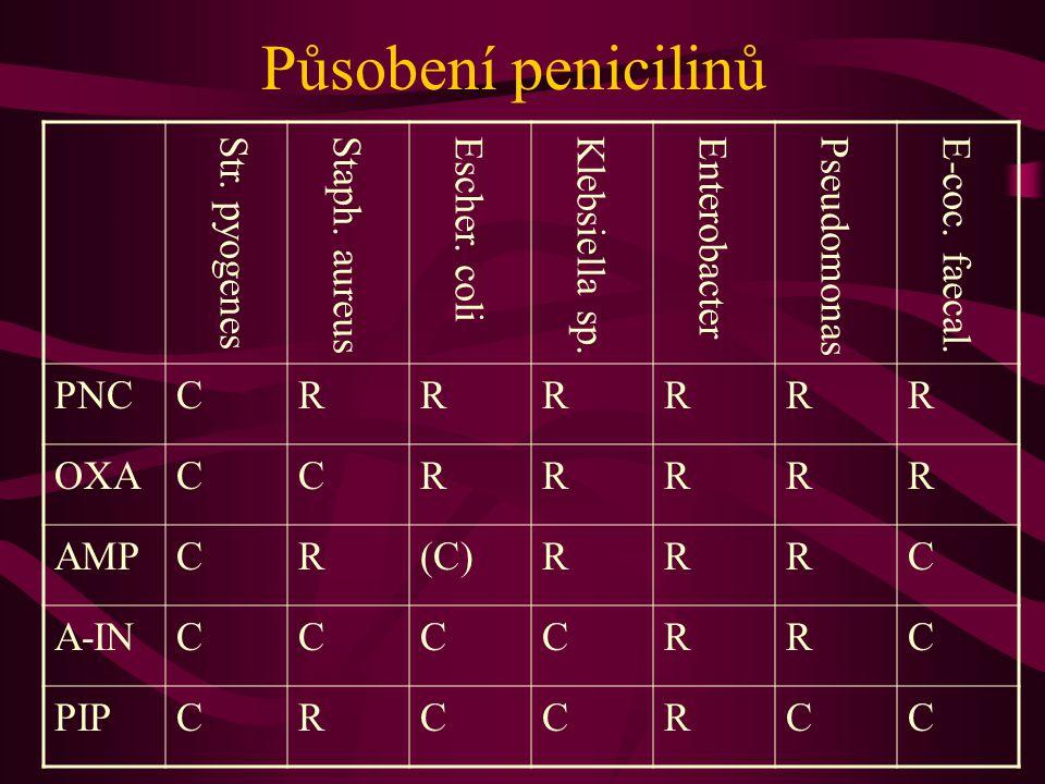Působení penicilinů PNC C R OXA AMP (C) A-IN PIP Str. pyogenes