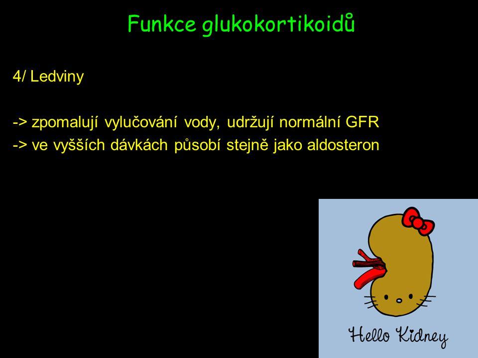 Funkce glukokortikoidů