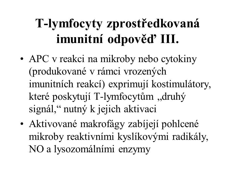 T-lymfocyty zprostředkovaná imunitní odpověď III.