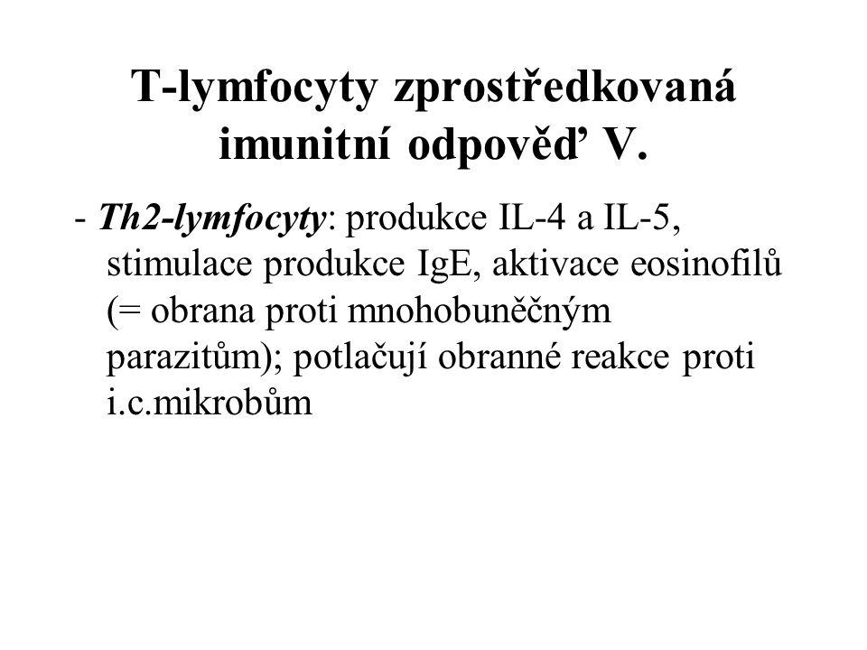 T-lymfocyty zprostředkovaná imunitní odpověď V.