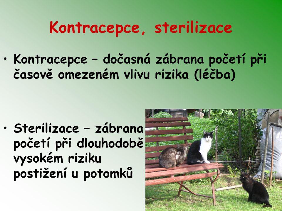 Kontracepce, sterilizace