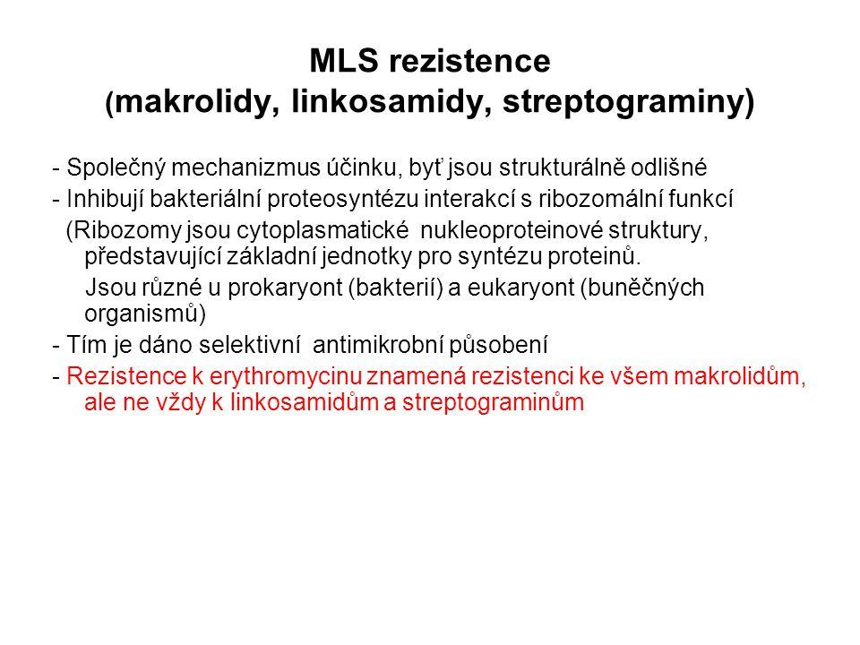 MLS rezistence (makrolidy, linkosamidy, streptograminy)