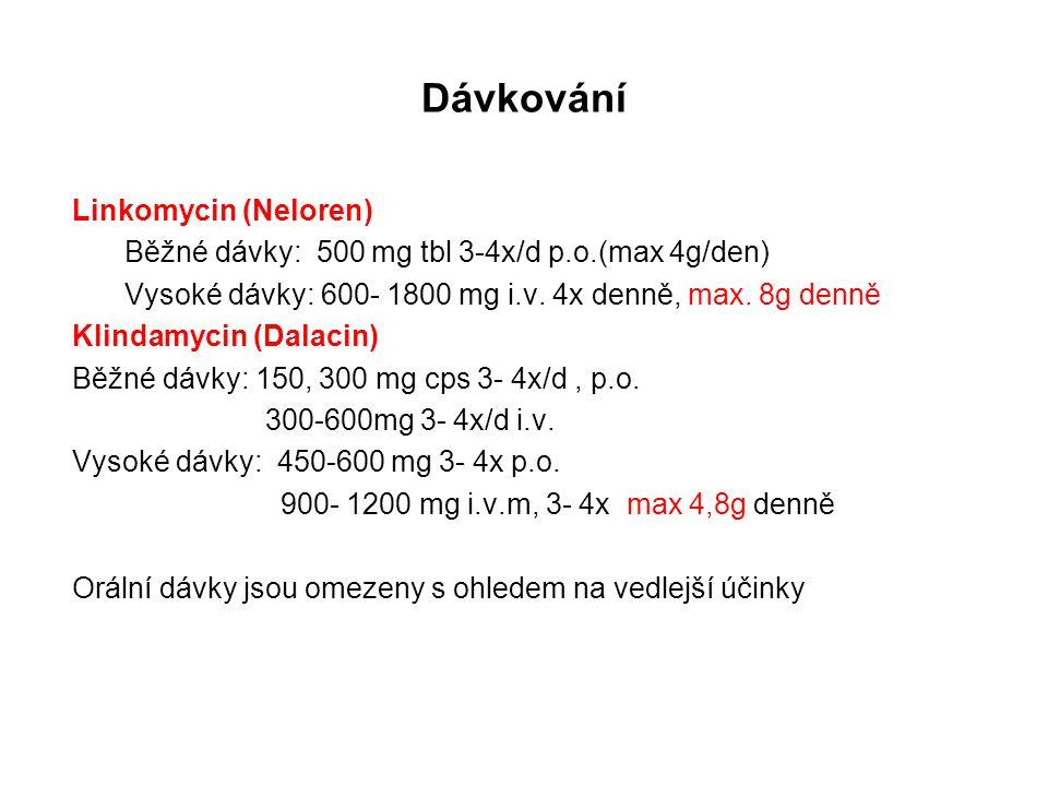 Dávkování Linkomycin (Neloren)