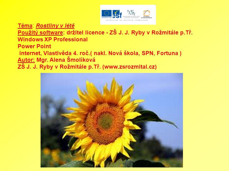 Téma: Rostliny v létě Použitý software: držitel licence - ZŠ J. J. Ryby v Rožmitále p.Tř. Windows XP Professional.