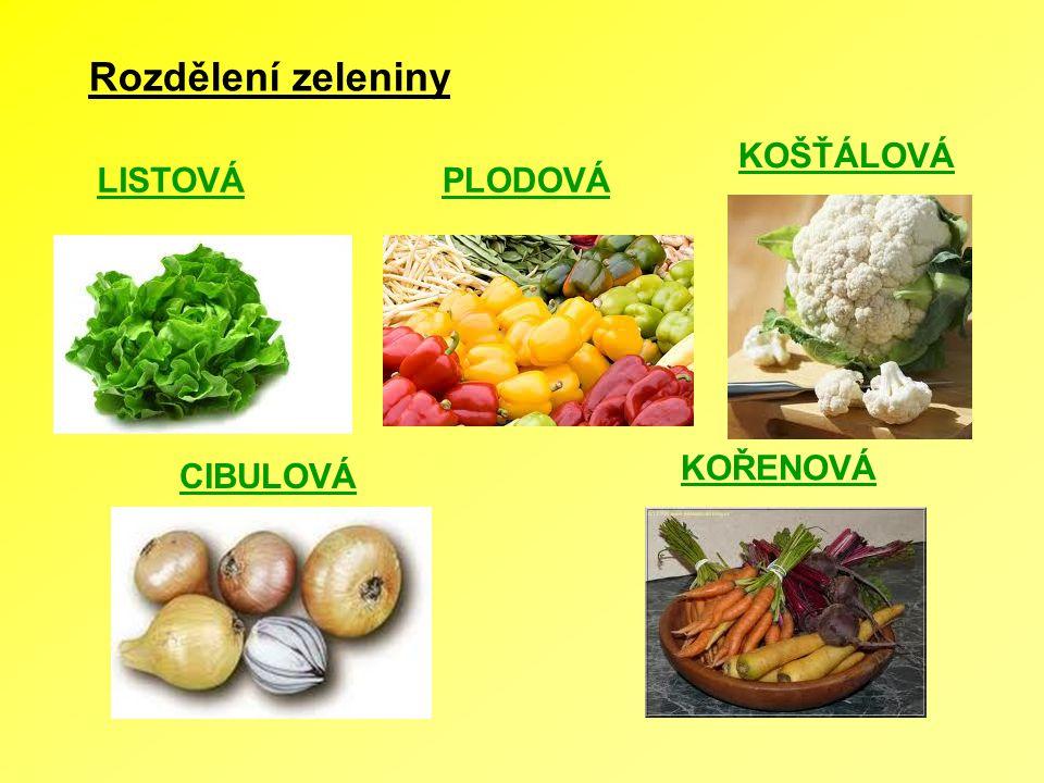 Rozdělení zeleniny KOŠŤÁLOVÁ LISTOVÁ PLODOVÁ KOŘENOVÁ CIBULOVÁ