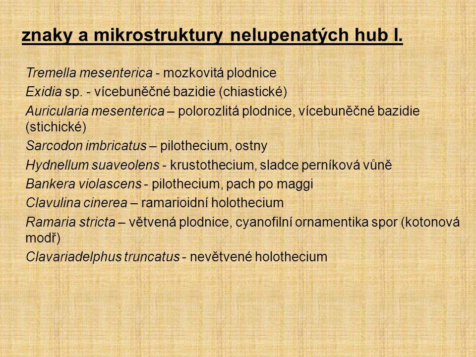 znaky a mikrostruktury nelupenatých hub I.
