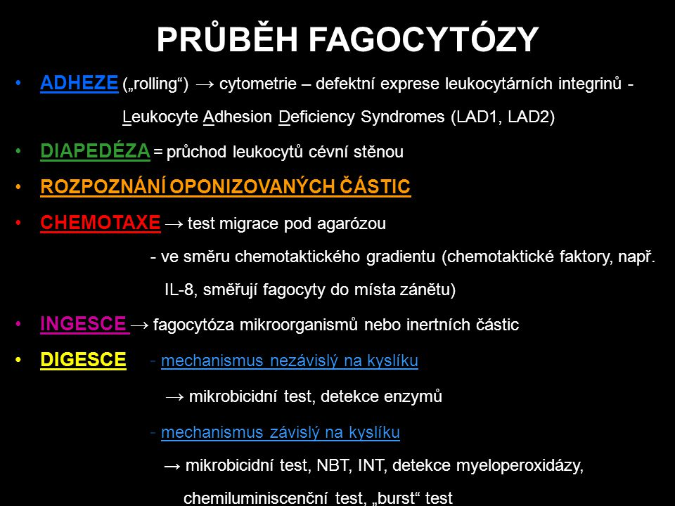 "PRŮBĚH FAGOCYTÓZY ADHEZE (""rolling ) → cytometrie – defektní exprese leukocytárních integrinů - Leukocyte Adhesion Deficiency Syndromes (LAD1, LAD2)"