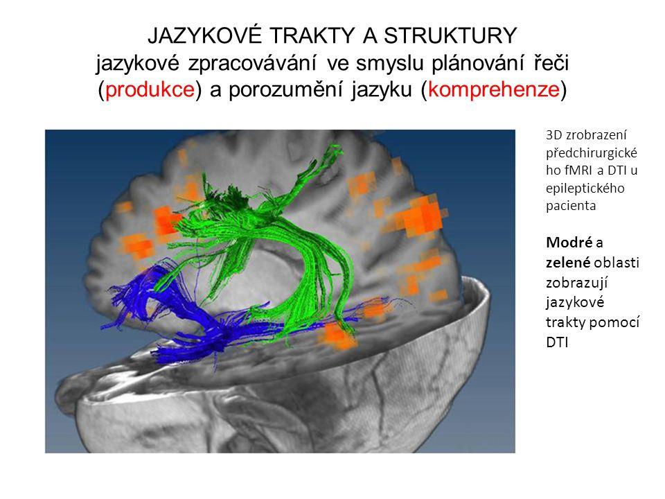 JAZYKOVÉ TRAKTY A STRUKTURY jazykové zpracovávání ve smyslu plánování řeči (produkce) a porozumění jazyku (komprehenze)