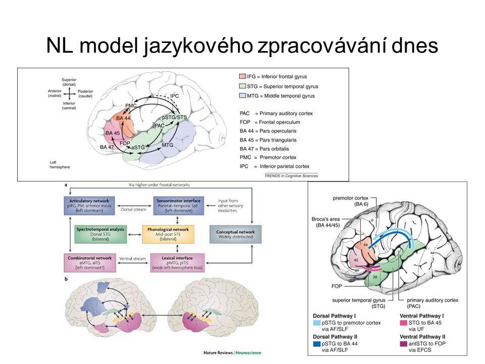 NL model jazykového zpracovávání dnes