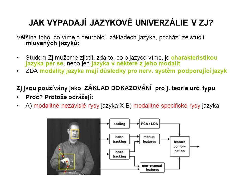 JAK VYPADAJÍ JAZYKOVÉ UNIVERZÁLIE V ZJ