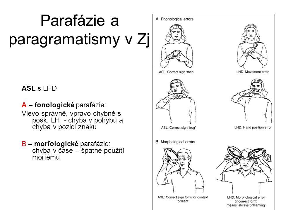 Parafázie a paragramatismy v Zj