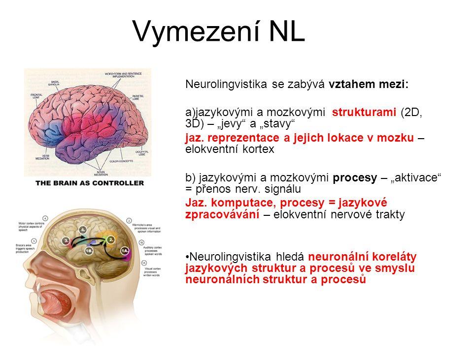 Vymezení NL Neurolingvistika se zabývá vztahem mezi: