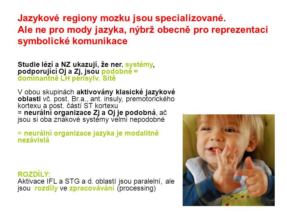Jazykové regiony mozku jsou specializované.