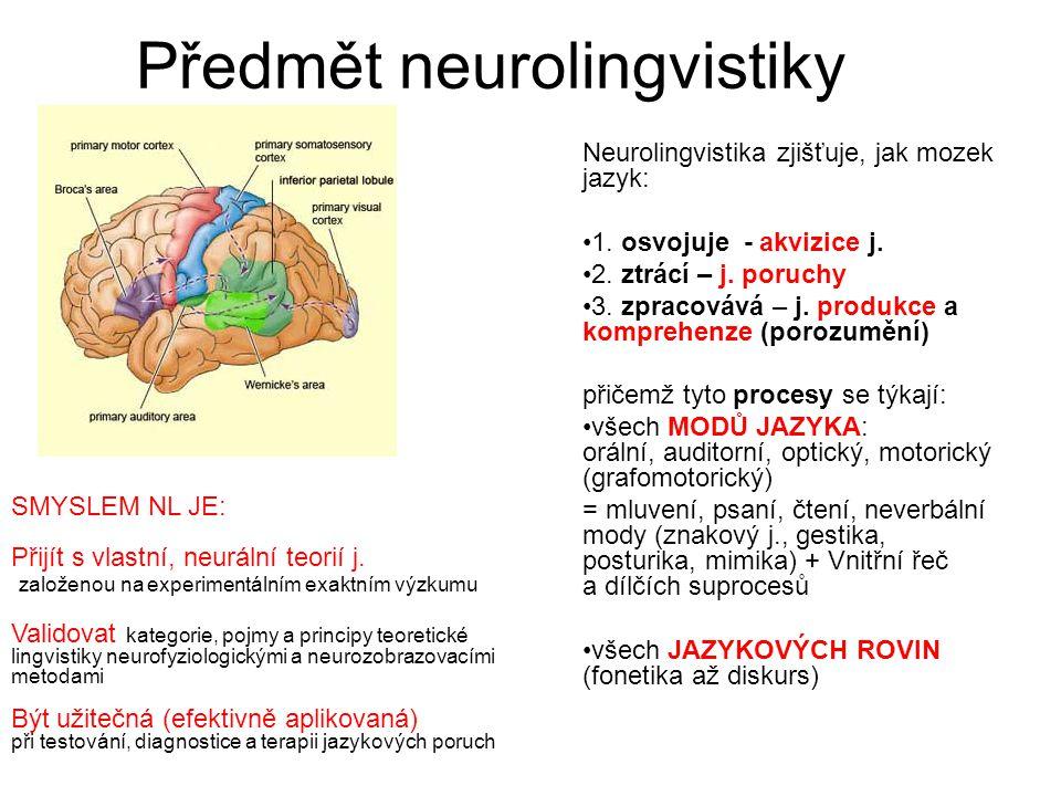 Předmět neurolingvistiky