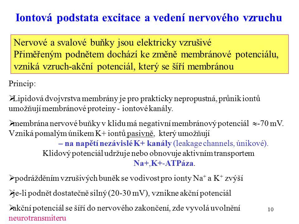 Iontová podstata excitace a vedení nervového vzruchu