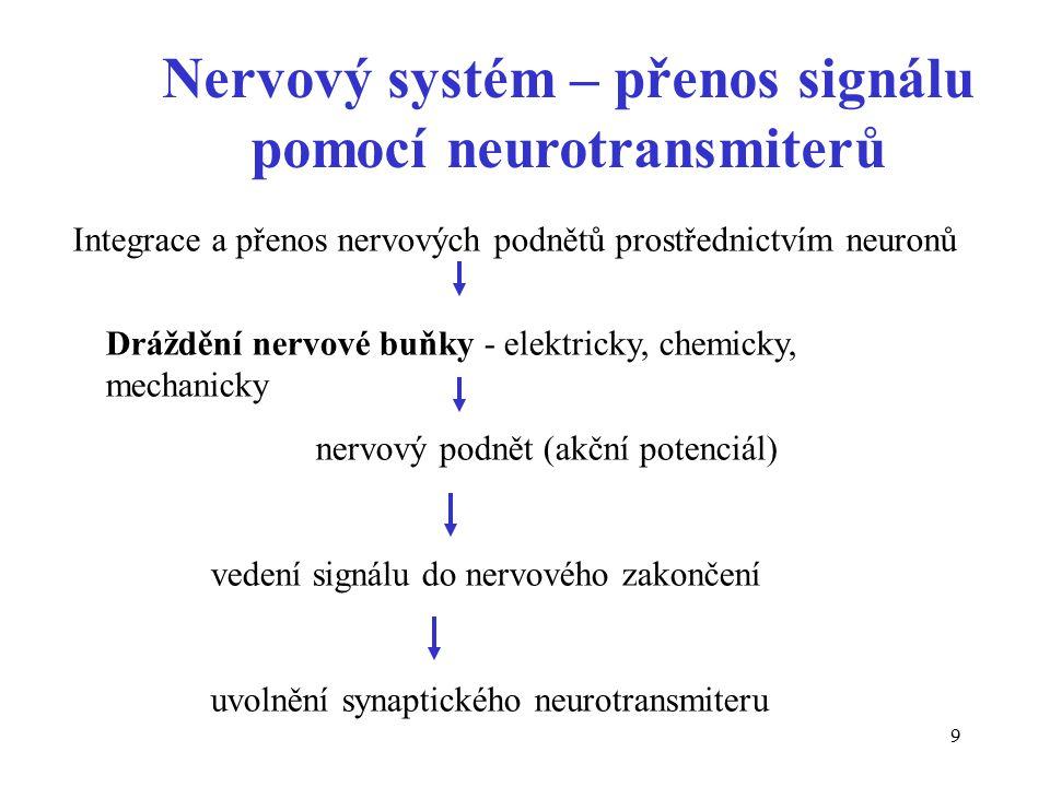 Nervový systém – přenos signálu pomocí neurotransmiterů