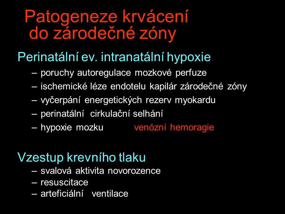 Patogeneze krvácení do zárodečné zóny