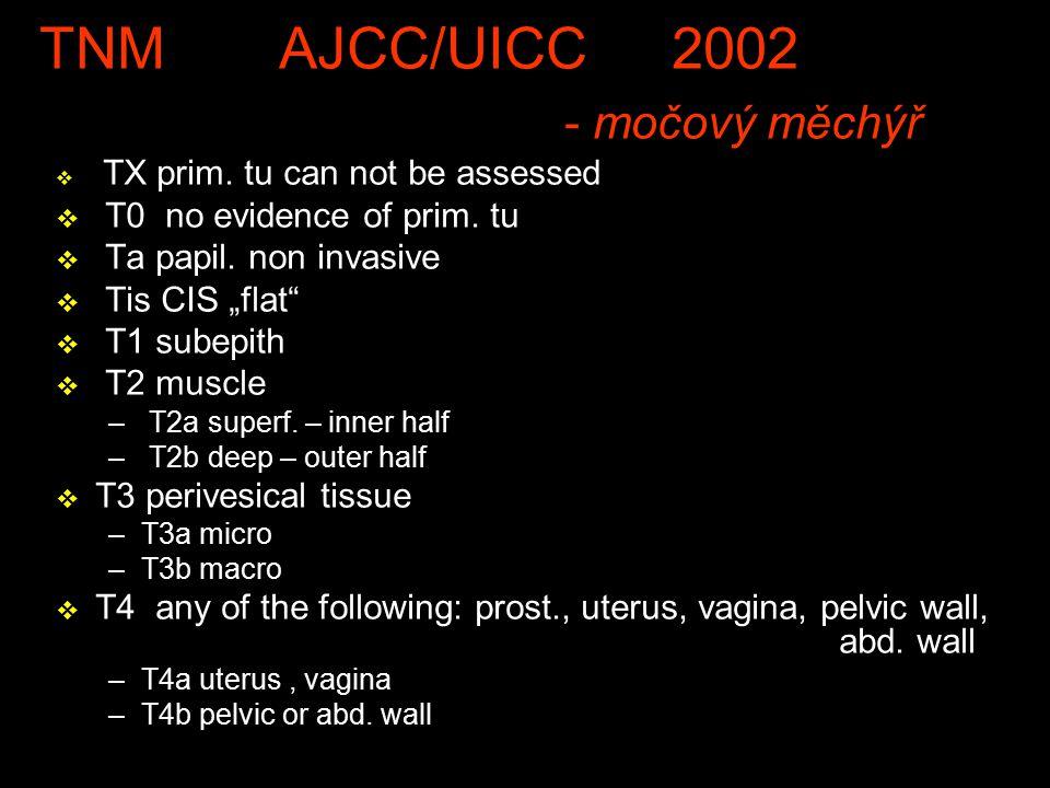 TNM AJCC/UICC 2002 - močový měchýř