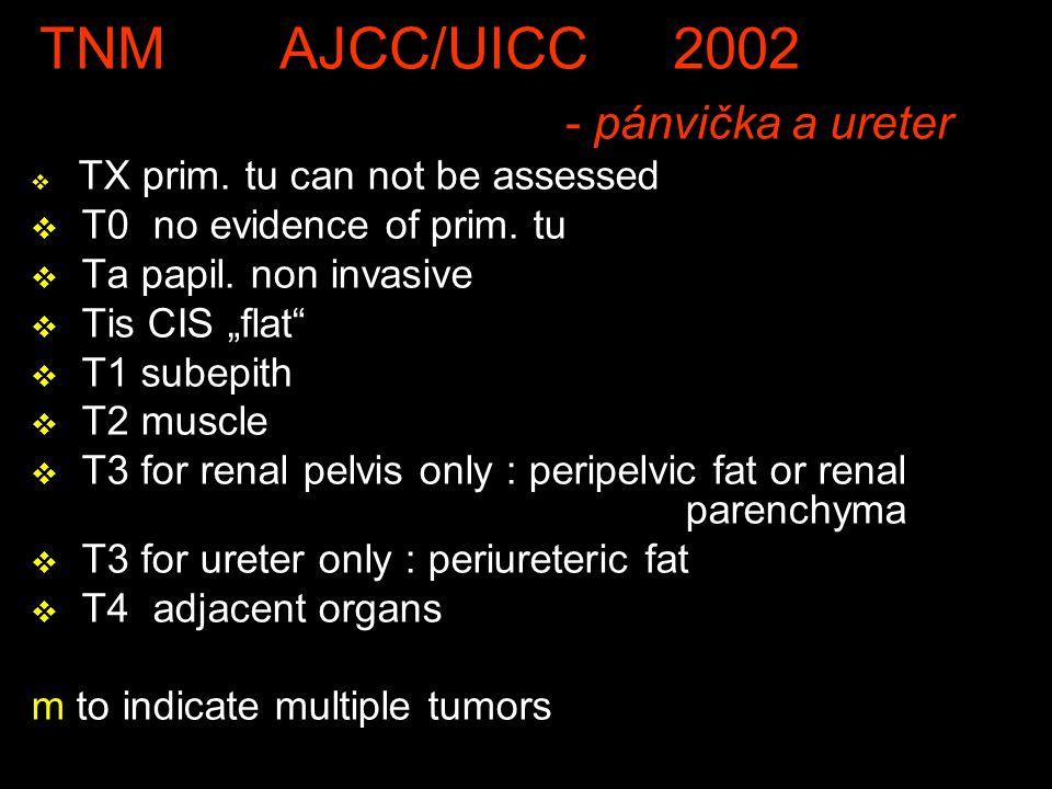 TNM AJCC/UICC 2002 - pánvička a ureter