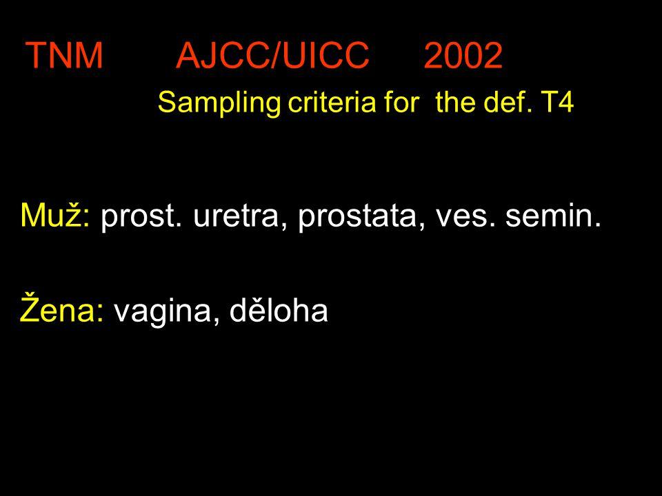 TNM AJCC/UICC 2002 Sampling criteria for the def. T4