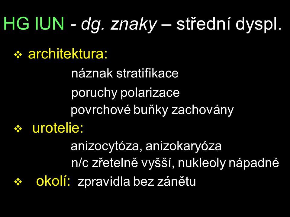HG IUN - dg. znaky – střední dyspl.