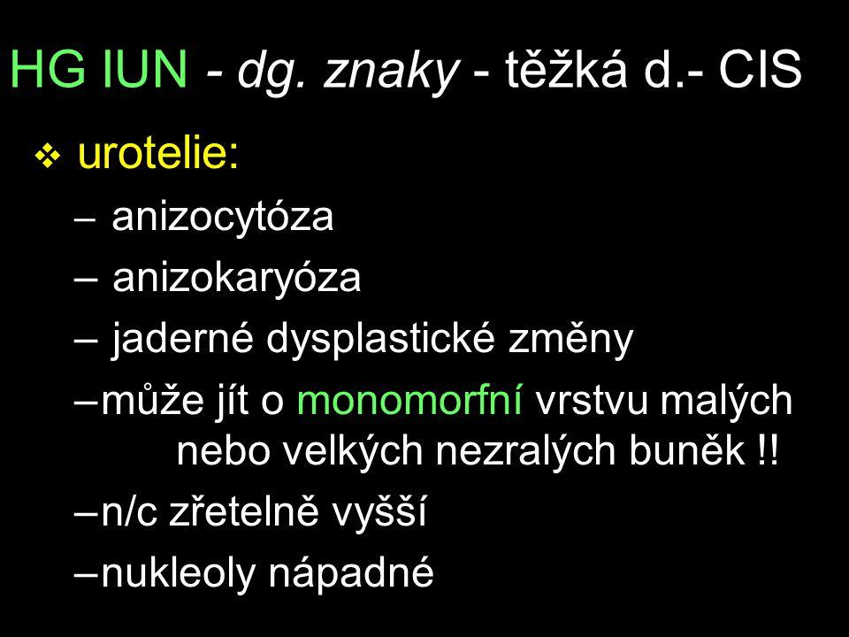 HG IUN - dg. znaky - těžká d.- CIS