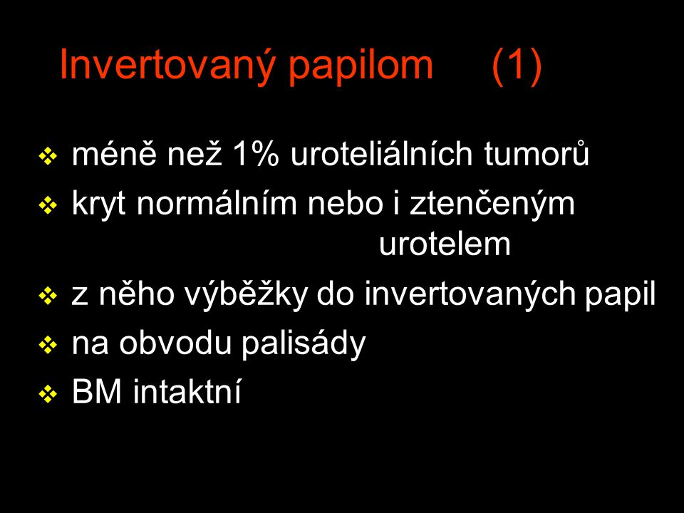 Invertovaný papilom (1)