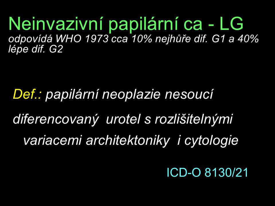 Neinvazivní papilární ca - LG odpovídá WHO 1973 cca 10% nejhůře dif