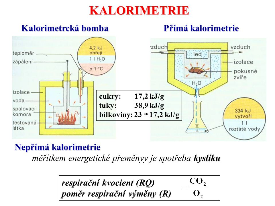 KALORIMETRIE Kalorimetrcká bomba Přímá kalorimetrie