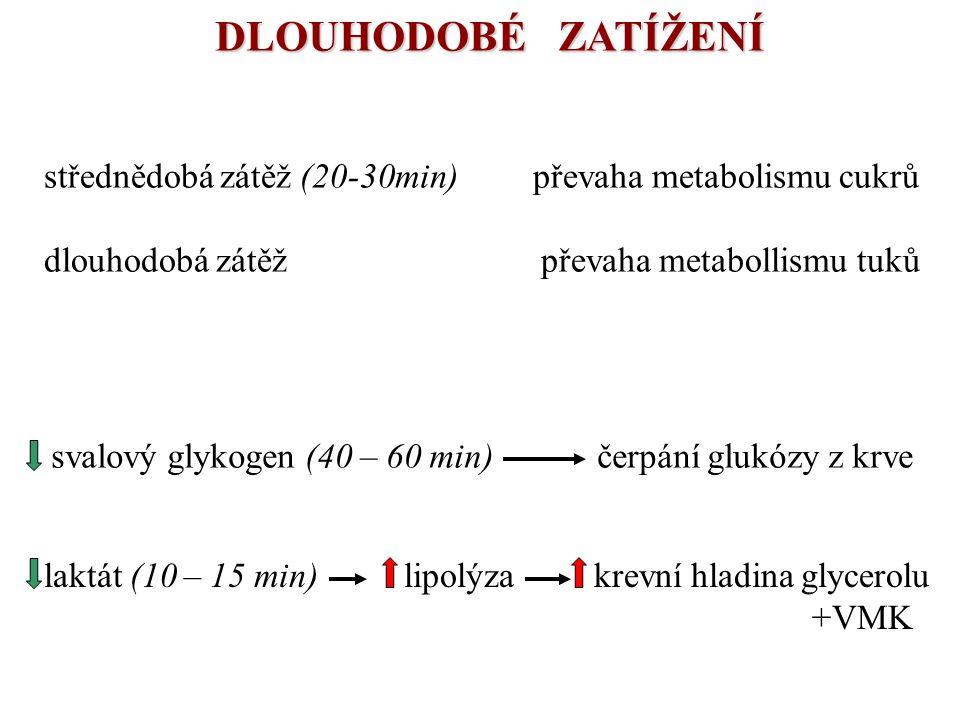 DLOUHODOBÉ ZATÍŽENÍ střednědobá zátěž (20-30min) převaha metabolismu cukrů.