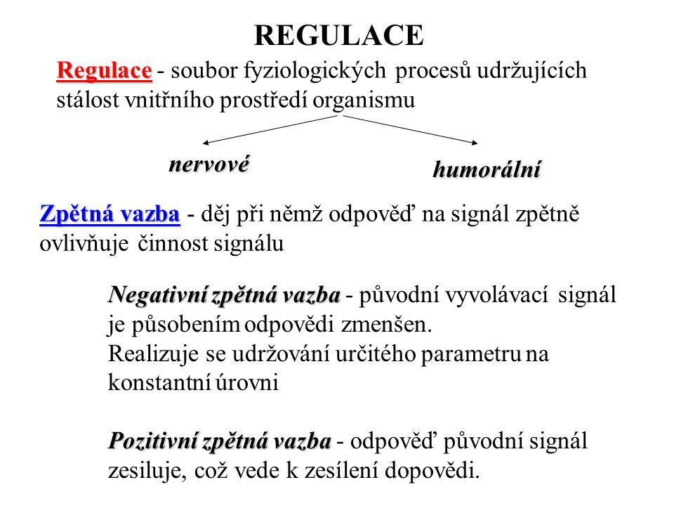REGULACE Regulace - soubor fyziologických procesů udržujících stálost vnitřního prostředí organismu.