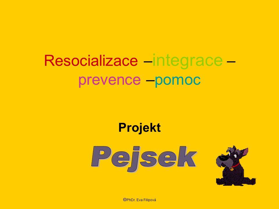 Resocializace –integrace –prevence –pomoc
