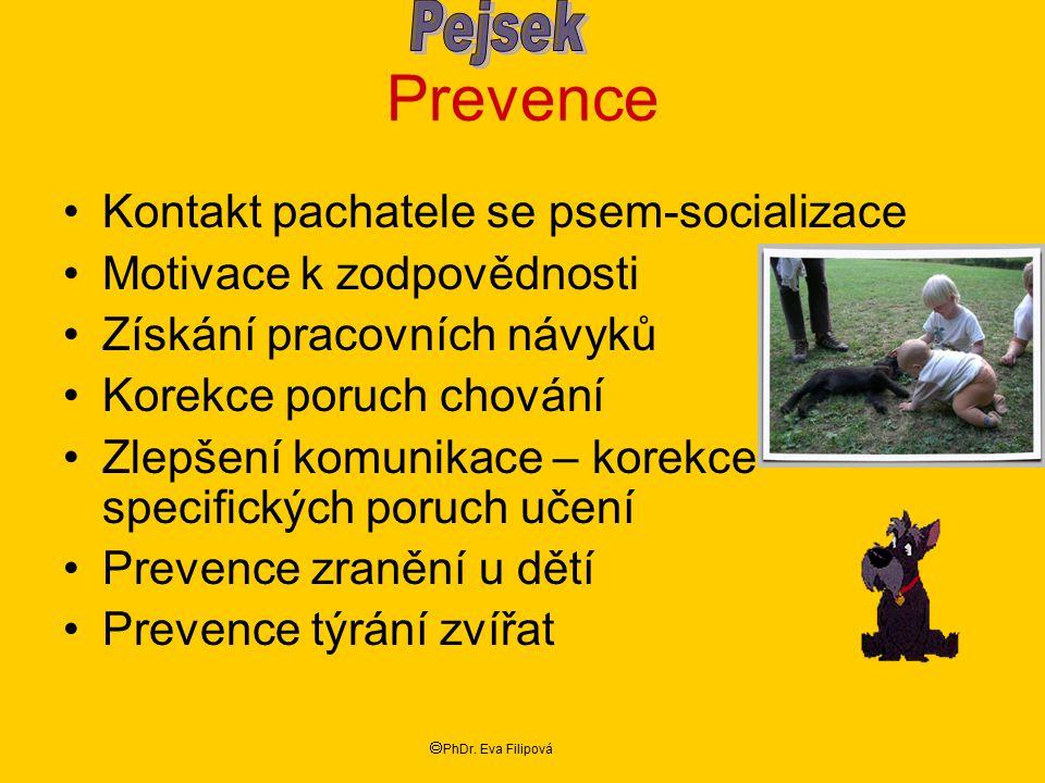 Prevence Pejsek Kontakt pachatele se psem-socializace
