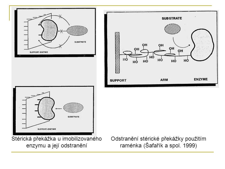 Stérická překážka u imobilizovaného enzymu a její odstranění