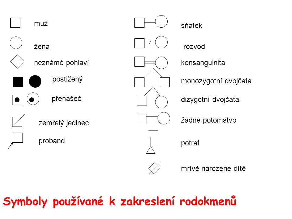 Symboly používané k zakreslení rodokmenů