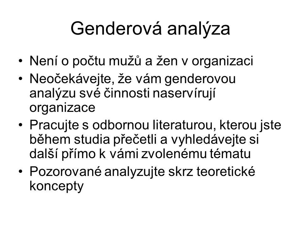 Genderová analýza Není o počtu mužů a žen v organizaci