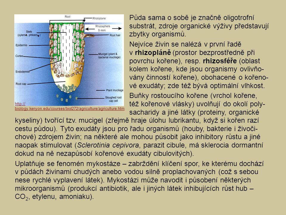 Půda sama o sobě je značně oligotrofní substrát, zdroje organické výživy představují zbytky organismů.