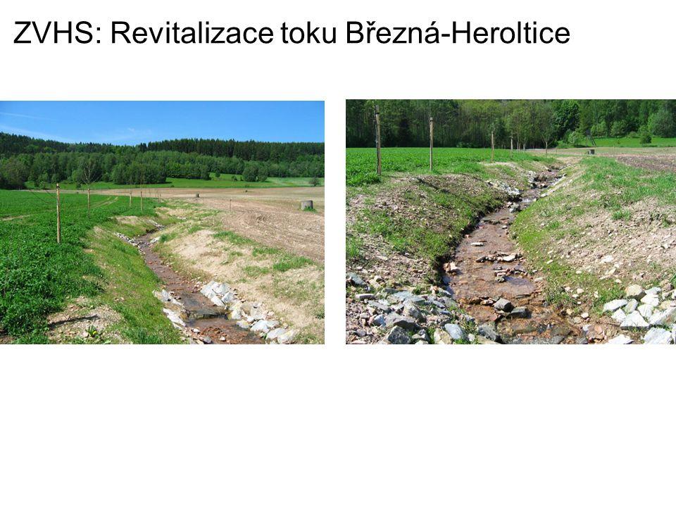 ZVHS: Revitalizace toku Březná-Heroltice
