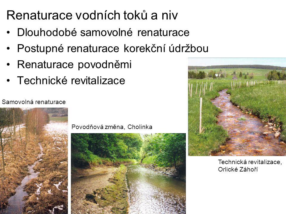 Renaturace vodních toků a niv