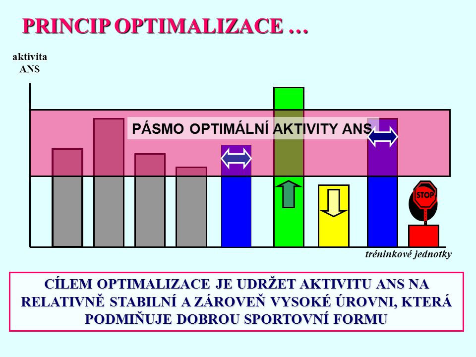 PRINCIP OPTIMALIZACE …