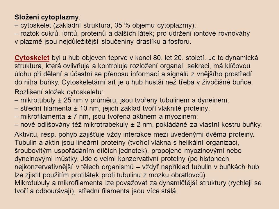 Složení cytoplazmy: – cytoskelet (základní struktura, 35 % objemu cytoplazmy); – roztok cukrů, iontů, proteinů a dalších látek; pro udržení iontové rovnováhy v plazmě jsou nejdůležitější sloučeniny draslíku a fosforu. Cytoskelet byl u hub objeven teprve v konci 80. let 20. století. Je to dynamická struktura, která ovlivňuje a kontroluje rozložení organel, sekreci, má klíčovou úlohu při dělení a účastní se přenosu informací a signálů z vnějšího prostředí do nitra buňky. Cytoskeletární síť je u hub hustší než třeba v živočišné buňce.