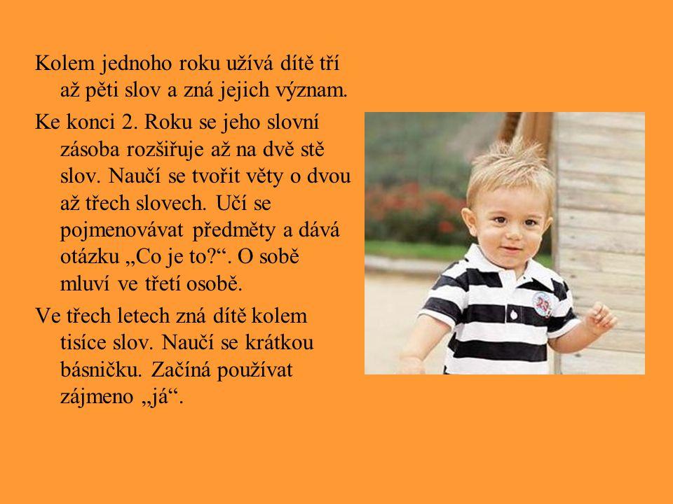 Kolem jednoho roku užívá dítě tří až pěti slov a zná jejich význam.