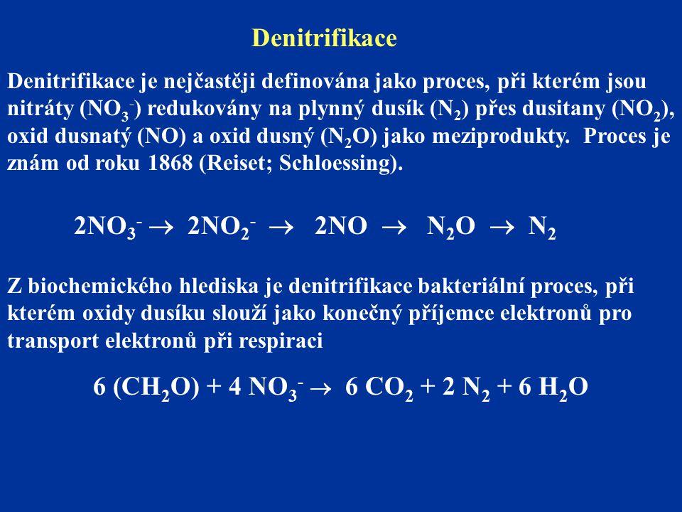 Denitrifikace 2NO3-  2NO2-  2NO  N2O  N2