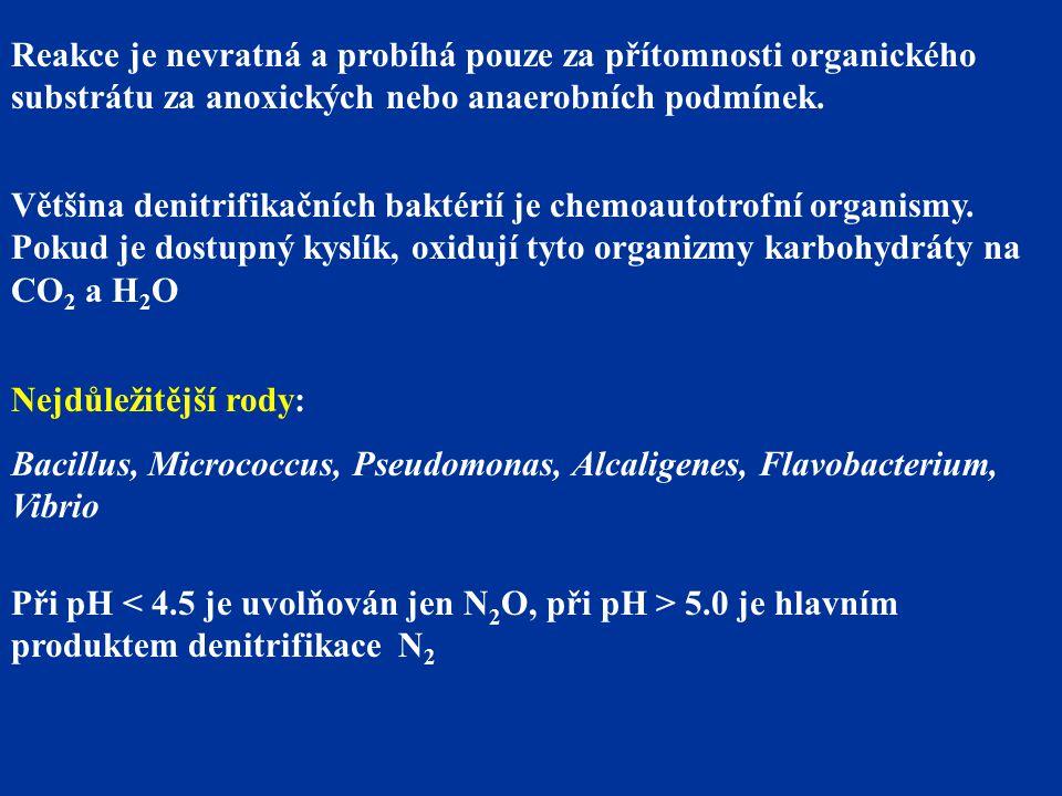 Reakce je nevratná a probíhá pouze za přítomnosti organického substrátu za anoxických nebo anaerobních podmínek.