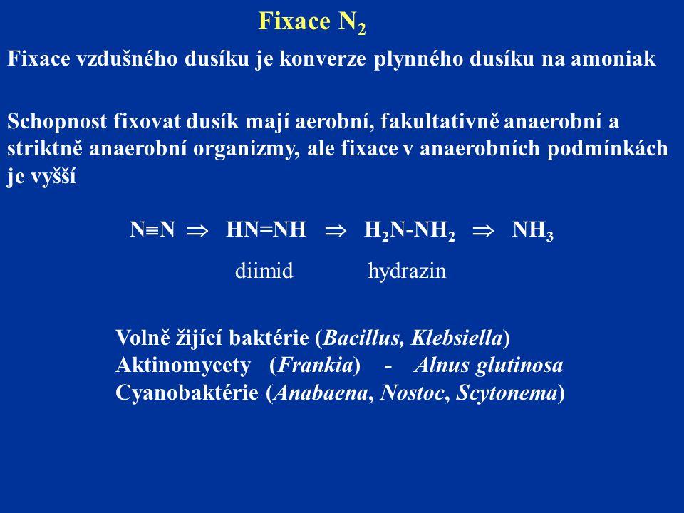 Fixace N2 Fixace vzdušného dusíku je konverze plynného dusíku na amoniak.