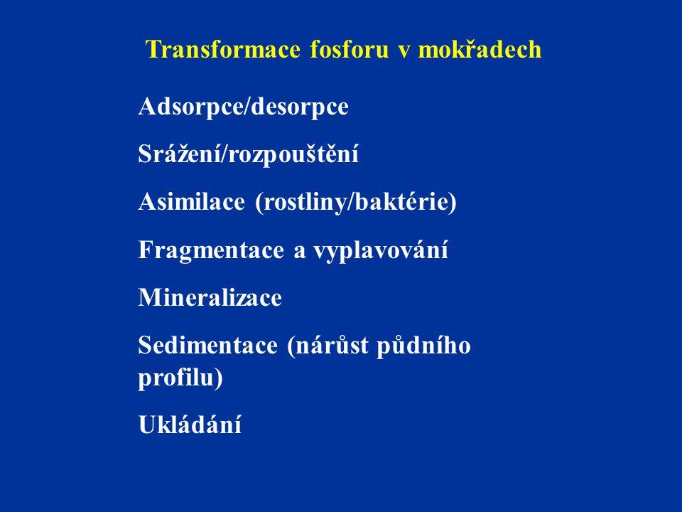 Transformace fosforu v mokřadech