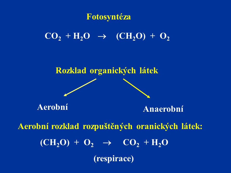 Fotosyntéza CO2 + H2O  (CH2O) + O2. Rozklad organických látek. Aerobní. Anaerobní. Aerobní rozklad rozpuštěných oranických látek: